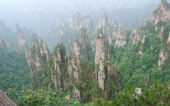 West Sea Sandstone Forest
